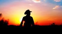 1031997_cowboy_sunset